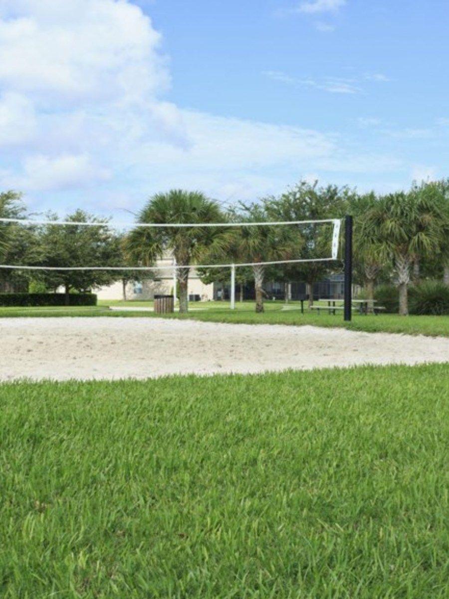 Portrait original volleyball
